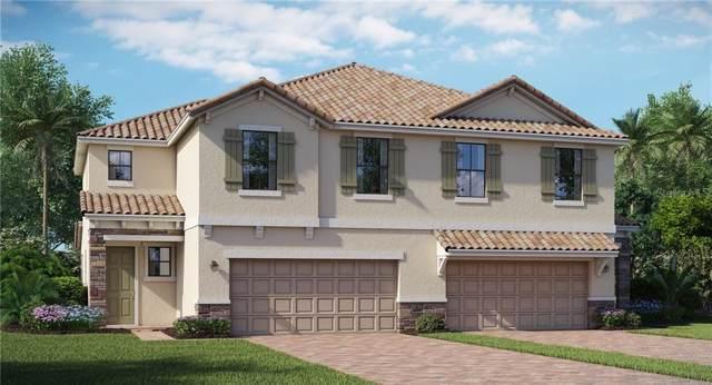 11803 Bluebird Place, Bradenton, FL 34211 (MLS #T3220604) :: Medway Realty