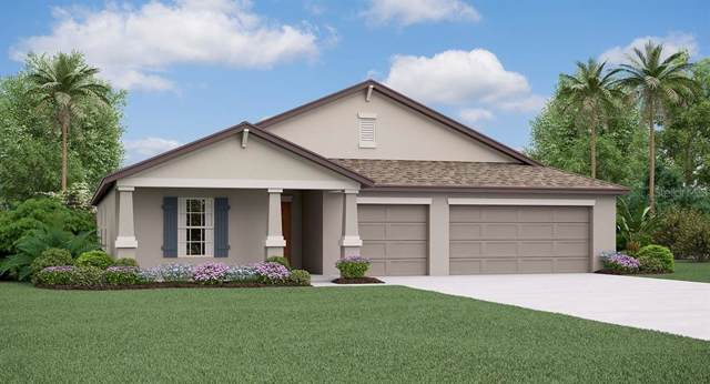 10832 Crushed Grape Drive, Riverview, FL 33578 (MLS #T3220634) :: Premier Home Experts