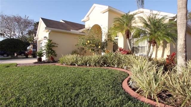 14607 Coral Berry Drive, Tampa, FL 33626 (MLS #T3220652) :: Delgado Home Team at Keller Williams