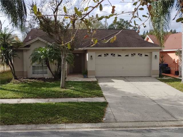 10017 Cedar Dune Drive, Tampa, FL 33624 (MLS #T3220657) :: GO Realty