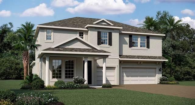 1717 Southern Red Oak, Ocoee, FL 34761 (MLS #T3220665) :: Team Bohannon Keller Williams, Tampa Properties