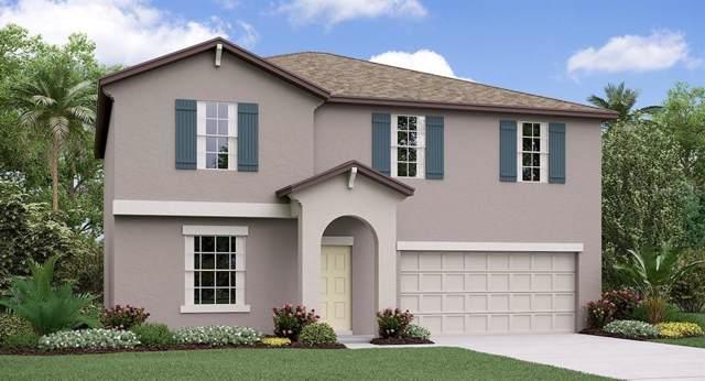 10601 Fairy Moss Lane, Riverview, FL 33578 (MLS #T3220673) :: Team Bohannon Keller Williams, Tampa Properties