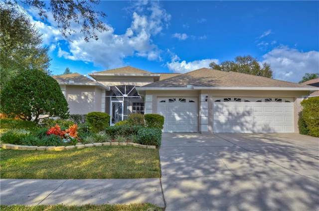 4208 Fleewell Court, Valrico, FL 33596 (MLS #T3220678) :: The Light Team