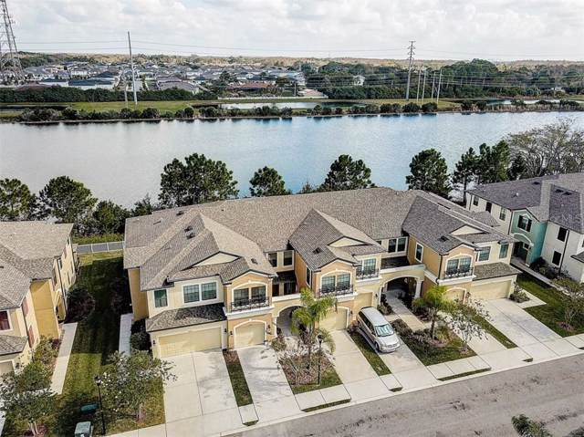 9136 Fox Sparrow Road, Tampa, FL 33626 (MLS #T3220680) :: Andrew Cherry & Company