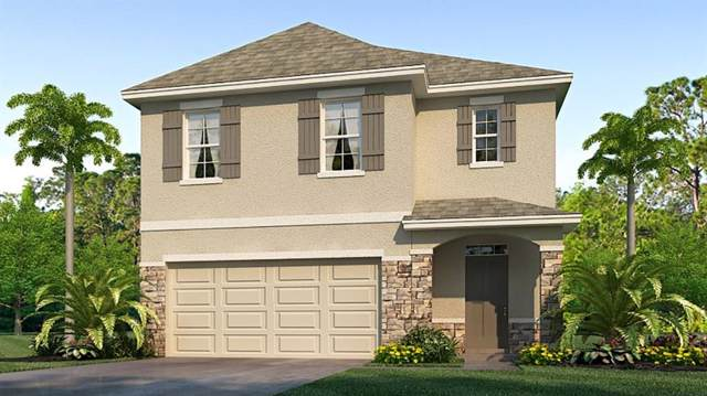 5834 Calla Lilly Drive, Sarasota, FL 34232 (MLS #T3220691) :: The Comerford Group