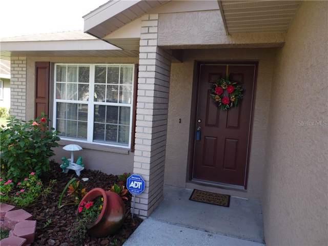 11730 Lynn Brook Circle, Seffner, FL 33584 (MLS #T3220778) :: Cartwright Realty