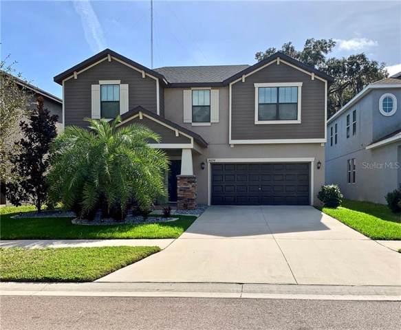 14274 Blue Dasher Drive, Riverview, FL 33569 (MLS #T3220818) :: Premier Home Experts