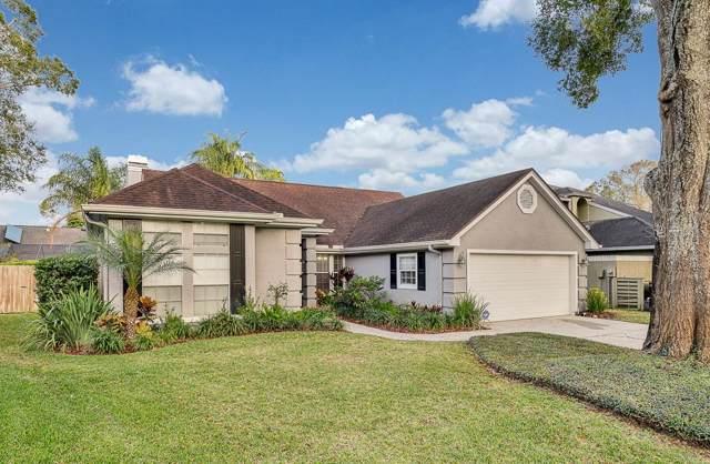 14509 Brambie Court, Tampa, FL 33624 (MLS #T3220825) :: Keller Williams Realty Peace River Partners