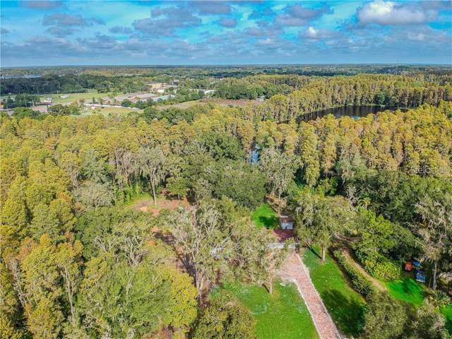 Dupree Drive, Land O Lakes, FL 34639 (MLS #T3220833) :: 54 Realty