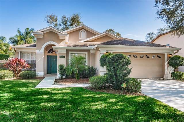 12813 Miramar Place, Tampa, FL 33625 (MLS #T3220834) :: Carmena and Associates Realty Group