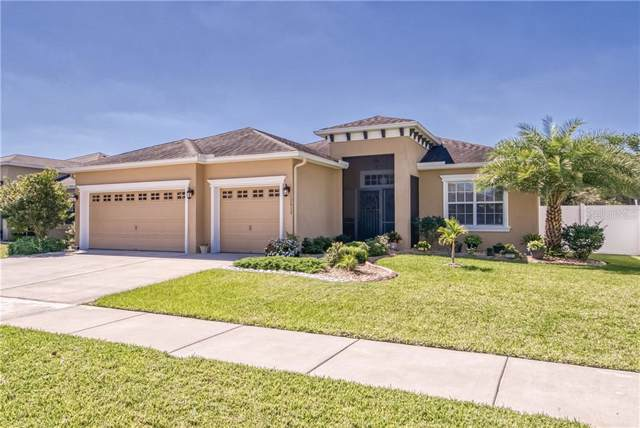 10612 Carloway Hills Drive, Wimauma, FL 33598 (MLS #T3220879) :: Team Bohannon Keller Williams, Tampa Properties
