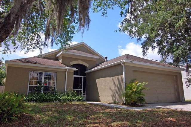 29818 Morningmist Drive, Wesley Chapel, FL 33543 (MLS #T3220926) :: The Light Team