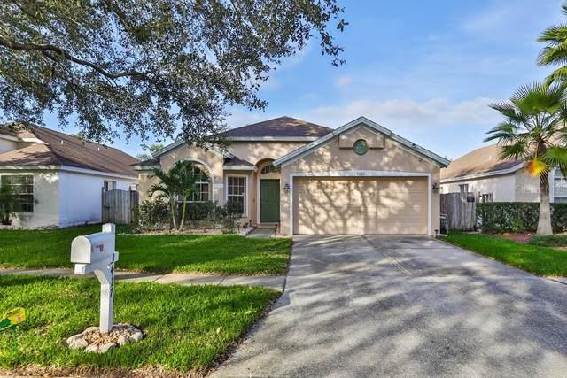 13417 White Elk Loop, Tampa, FL 33626 (MLS #T3220932) :: Team Bohannon Keller Williams, Tampa Properties