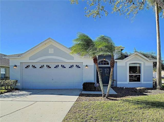 29540 Morwen Place, Wesley Chapel, FL 33543 (MLS #T3220938) :: Premier Home Experts