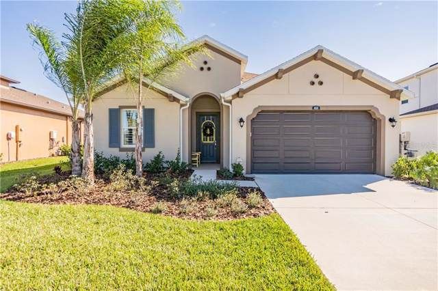 4610 Tivoli Drive, Wesley Chapel, FL 33543 (MLS #T3220960) :: Team Borham at Keller Williams Realty