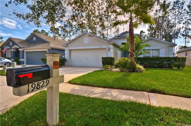 19829 Bellehurst Loop, Land O Lakes, FL 34638 (MLS #T3220963) :: Team Bohannon Keller Williams, Tampa Properties