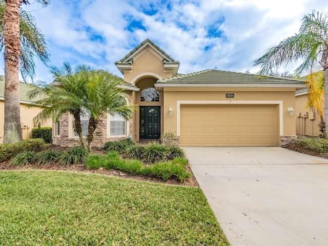 13234 Palmilla Circle, Dade City, FL 33525 (MLS #T3220991) :: Charles Rutenberg Realty