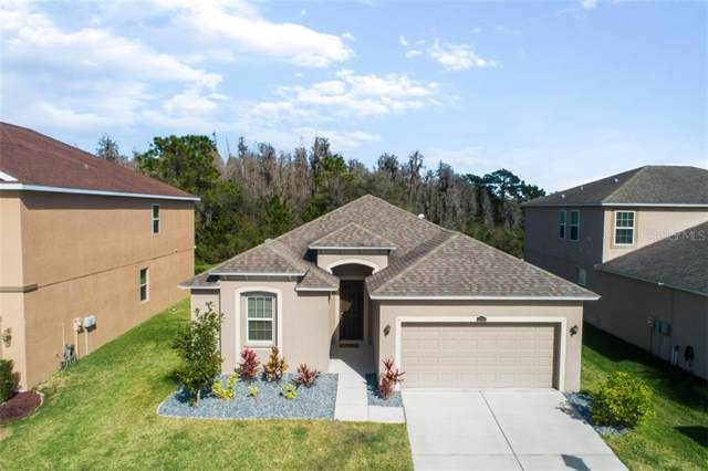 32803 Grantman Drive, Wesley Chapel, FL 33543 (MLS #T3221015) :: Griffin Group