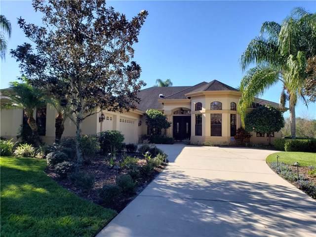 3119 Lynwood Court, Land O Lakes, FL 34638 (MLS #T3221023) :: Team Bohannon Keller Williams, Tampa Properties