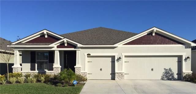 11528 Blue Woods Drive, Riverview, FL 33569 (MLS #T3221027) :: Griffin Group