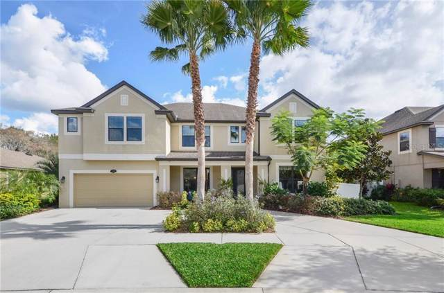 11922 Harpswell Drive, Riverview, FL 33579 (MLS #T3221046) :: Premier Home Experts