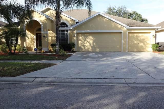 8511 Northton Groves Boulevard, Odessa, FL 33556 (MLS #T3221049) :: Team Bohannon Keller Williams, Tampa Properties