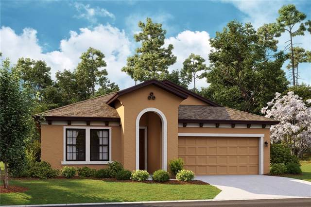6453 Tideline Drive, Apollo Beach, FL 33572 (MLS #T3221055) :: Griffin Group