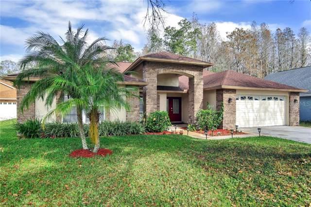 6715 Frontier Lane, Tampa, FL 33625 (MLS #T3221064) :: Cartwright Realty