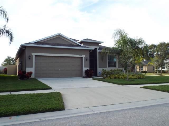 16607 Magnolia Reserve Place, Wimauma, FL 33598 (MLS #T3221083) :: 54 Realty