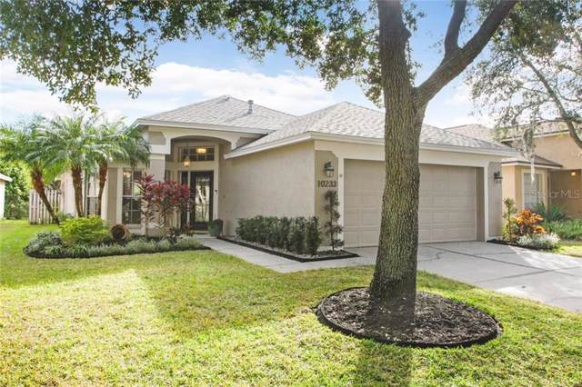 10233 Woodford Bridge Street, Tampa, FL 33626 (MLS #T3221088) :: Team Bohannon Keller Williams, Tampa Properties