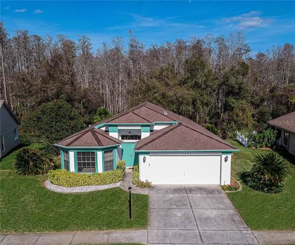 9645 Conservation Drive, New Port Richey, FL 34655 (MLS #T3221112) :: The Heidi Schrock Team