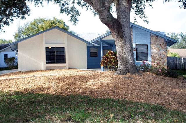 1712 Dove Field Place, Brandon, FL 33510 (MLS #T3221187) :: Griffin Group