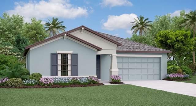 11340 Misty Moss Drive, Wimauma, FL 33598 (MLS #T3221211) :: 54 Realty