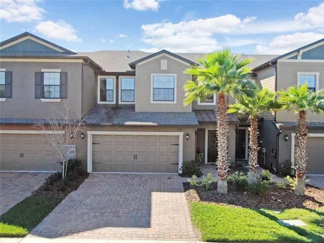 3289 Gentle Dell Court, Wesley Chapel, FL 33543 (MLS #T3221221) :: Pepine Realty
