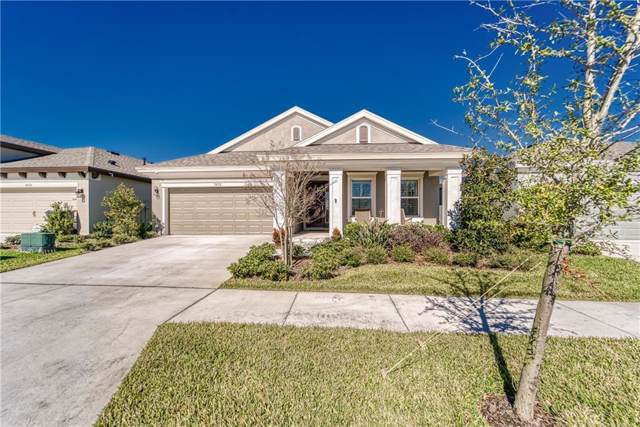 7426 Sungold Meadow Court, Apollo Beach, FL 33572 (MLS #T3221223) :: Griffin Group