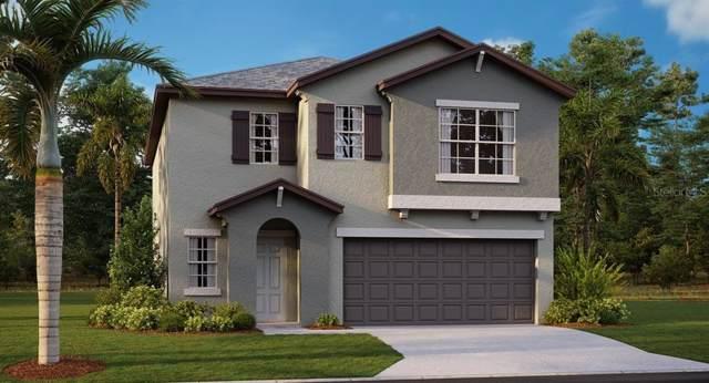 15709 Charr Island Street, Ruskin, FL 33573 (MLS #T3221244) :: 54 Realty