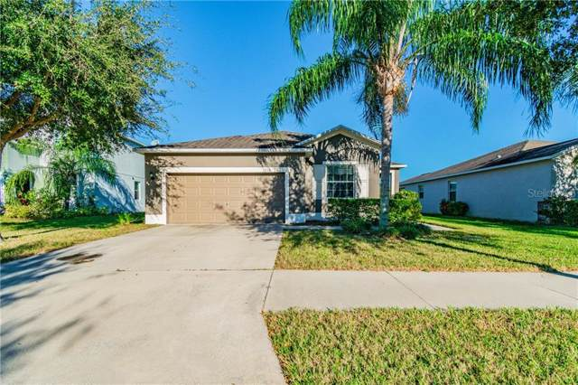 510 Powder View Drive, Ruskin, FL 33570 (MLS #T3221284) :: 54 Realty