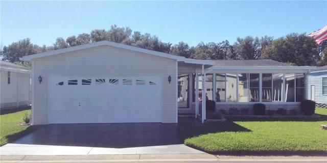 34034 Brown Bayou, Wesley Chapel, FL 33543 (MLS #T3221322) :: Team Bohannon Keller Williams, Tampa Properties