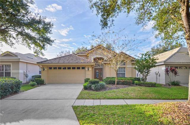 17619 Nathans Drive, Tampa, FL 33647 (MLS #T3221349) :: Premier Home Experts