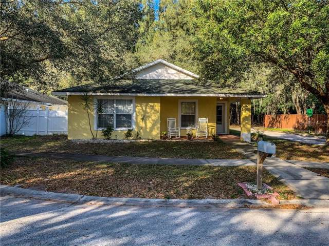 10317 Summerview Circle, Riverview, FL 33578 (MLS #T3221371) :: Medway Realty