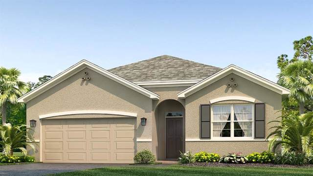 12133 Sirena Cove, Parrish, FL 34219 (MLS #T3221377) :: The Figueroa Team