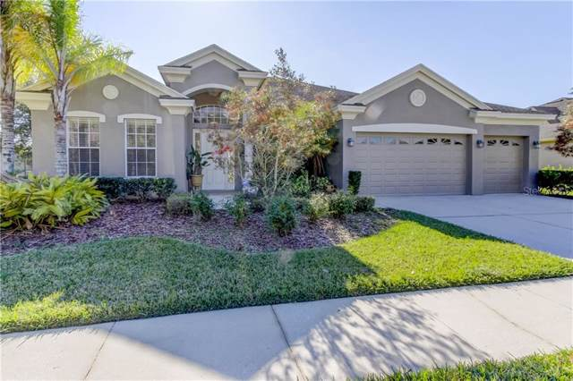 10517 Palm Cove Avenue, Tampa, FL 33647 (MLS #T3221416) :: Premier Home Experts
