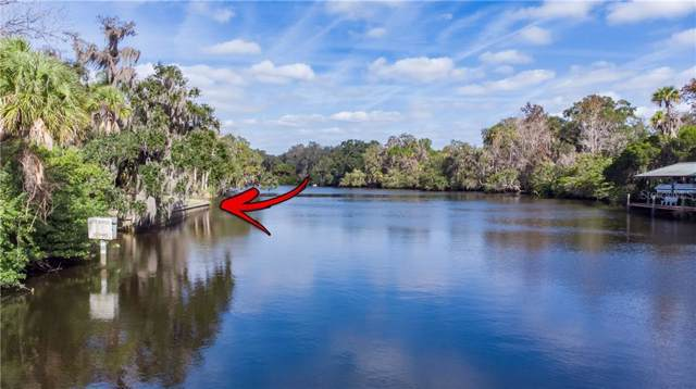 11230 Riverview Drive, Riverview, FL 33578 (MLS #T3221423) :: RE/MAX Realtec Group