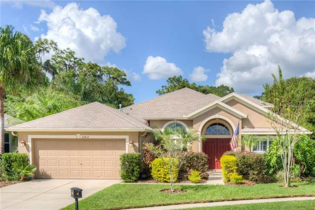 16412 Bridgelawn Avenue, Lithia, FL 33547 (MLS #T3221431) :: Kendrick Realty Inc