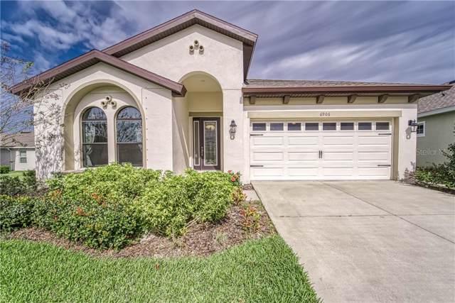 6906 Paradiso Drive, Apollo Beach, FL 33572 (MLS #T3221435) :: Dalton Wade Real Estate Group