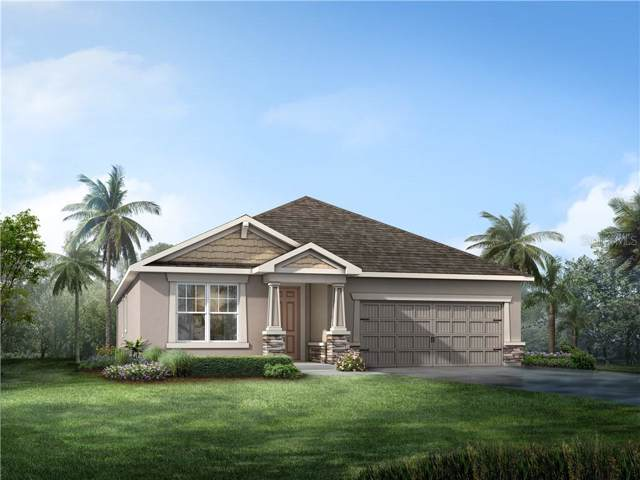 13021 Satin Lily Drive #42, Riverview, FL 33579 (MLS #T3221463) :: Premier Home Experts