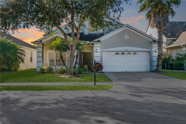2623 Palesta Drive, New Port Richey, FL 34655 (MLS #T3221483) :: Gate Arty & the Group - Keller Williams Realty Smart