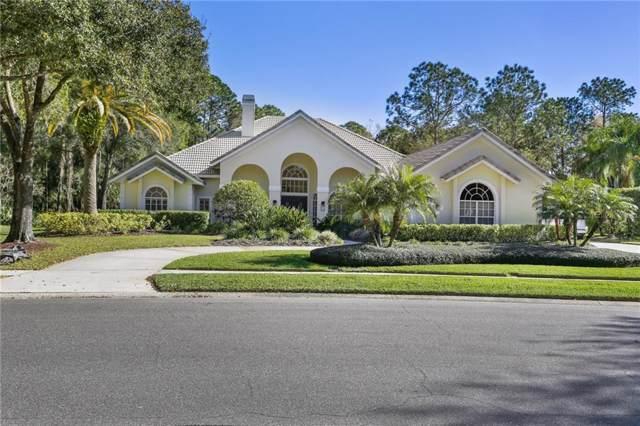 8950 Magnolia Chase Circle, Tampa, FL 33647 (MLS #T3221491) :: 54 Realty