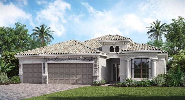 17915 Polo Trail, Bradenton, FL 34211 (MLS #T3221496) :: Cartwright Realty