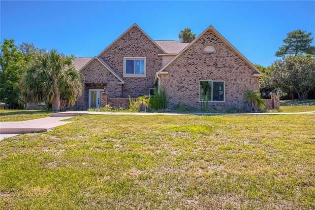 7449 Royal Oak Drive, Spring Hill, FL 34607 (MLS #T3221516) :: Pristine Properties